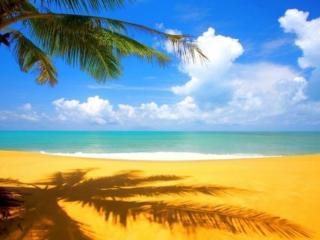 обои Синее небо,   лазурное море и золотой песок фото