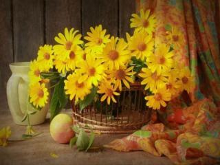 обои Натюрморт - Осенние цветы с яблоком и кувшином фото