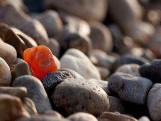 обои Галька светлая и оранжевый камушек фото