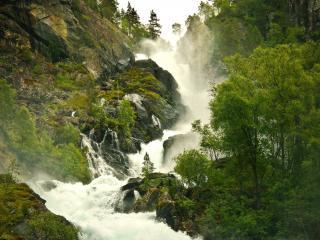 обои Лесной водопад между деревьев и скал фото