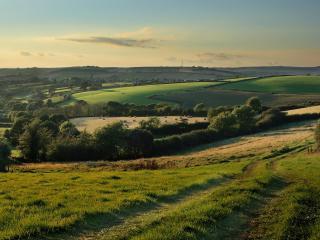 обои Полевая дорога и ландшафт местности фото