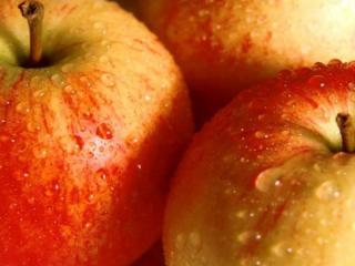 обои Яблоки в каплях воды фото