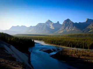 обои Лес на фоне реки и гор фото