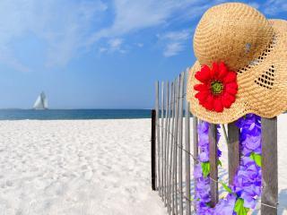 обои Шляпа с красным цветком на заборе у моря фото