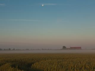 обои Туман над полем у деревушки фото