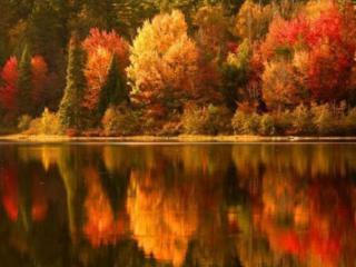 обои Сентябрьские краски фото