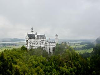 обои Высокий замок в зелени деревьев фото