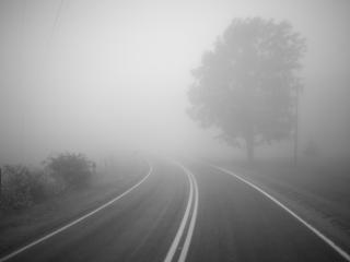 обои для рабочего стола: Туман на дороге
