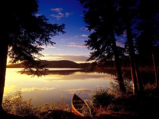 обои Лодка у темного леса фото