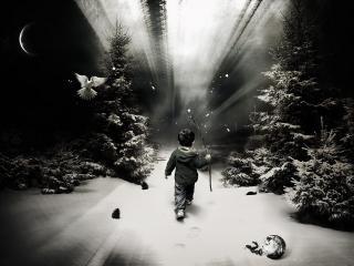обои Мальчик идущий в неизвестность фото