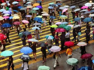 обои Многоцветные  Зонты фото