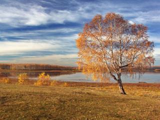 обои Аргазинская осень фото