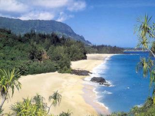 обои Песчаный пляж на берегу моря фото