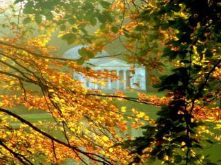 обои Осень в старом парке фото