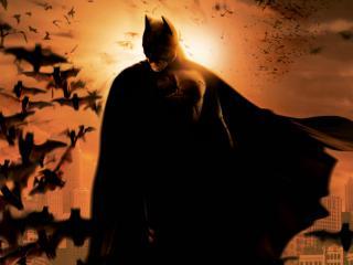 обои Бэтмэн в плще на фоне мышей фото