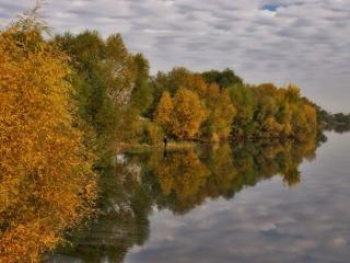 обои Осень на берегу реки фото