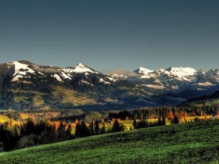 обои Вид зеленого леса на фоне гор фото