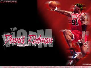 обои Dennis Rodman фото