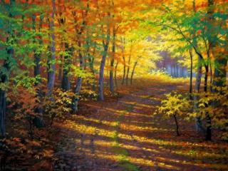 обои Дорога в осеннем кленовом лесу фото