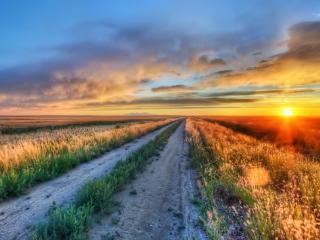 обои для рабочего стола: Грунтовая дорога у поля в зариве заката