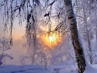 обои Морозный восход фото