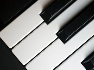 обои Клавиши нот от до фа диез фото