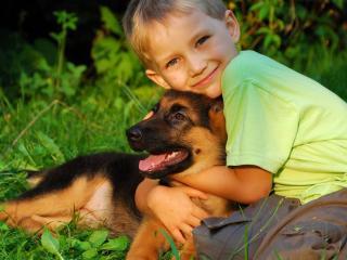 обои Мальчик в обнимку со щенком фото