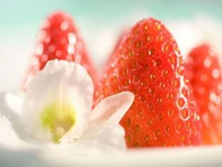 обои Цветочки и ягодки фото