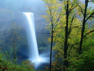 обои Водопад в далёком лесу фото