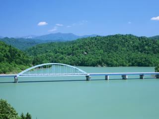 обои Мост на фоне зелени лесной фото
