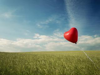 обои Красный шарик в поле фото