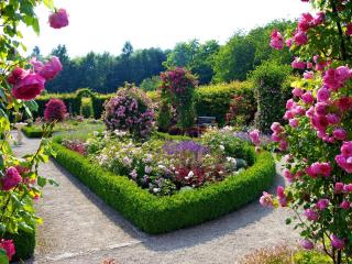 обои Красивое цветение клумб фото