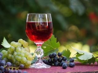 обои Натюрморт - Бокал вина и виноград фото