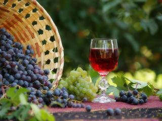 обои Каскадом виноград струится фото