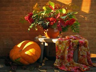 обои Красавица Осень фото