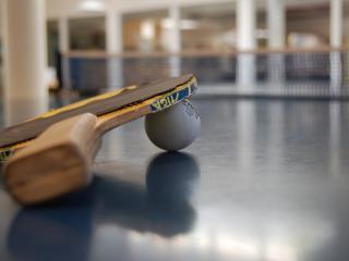 обои Настольный тенисный шарик и ракетка фото