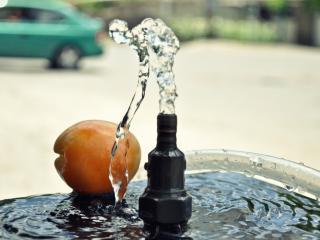 обои Струйка воды и абрикос фото