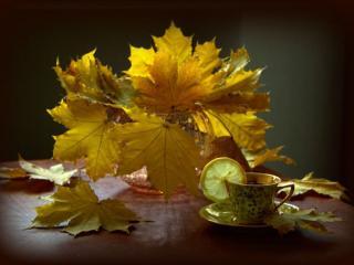 обои Осеннее золото фото