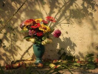 обои Натюрморт - Под солнцем августа фото