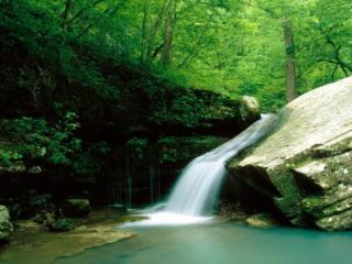 обои Маленький но сильный лесной водопадик фото