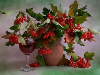обои Натюрморт - Калиновое вино фото
