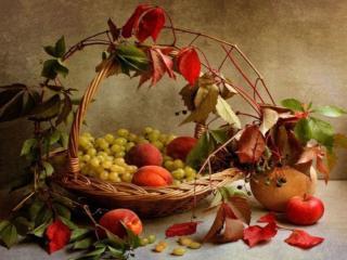 обои Осенние фруктово-ягодные дары фото