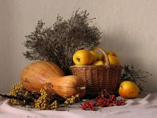 обои Натюрморт - Осенний фото