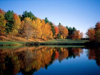 обои Любуется осень своим отраженьем в пруду фото
