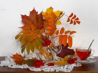 обои Натюрморт - Осенний, огненные листья и чашка чая фото
