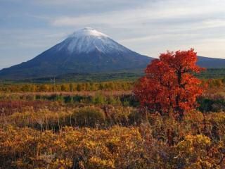 обои Осенняя Камчатка фото