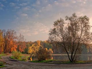 обои Осенняя пастораль фото