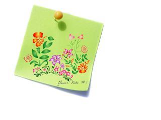 обои Зеленая цветочная записка фото
