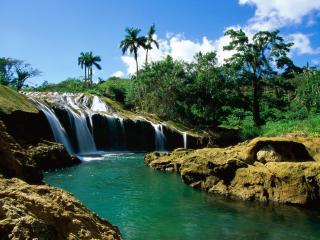 обои Небольшой водопад в джунглях фото