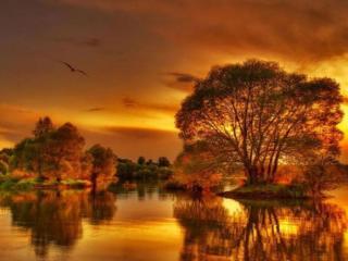 обои Осенний закат фото
